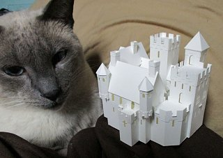 Click image for larger version  Name:castle prototype.jpg Views:23 Size:99.7 KB ID:101724