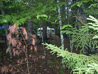 Click image for larger version  Name:Deer and Camper.jpg Views:17 Size:55.9 KB ID:111376