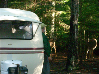 Click image for larger version  Name:Gerry, Camper and Deer.png Views:18 Size:389.9 KB ID:111377