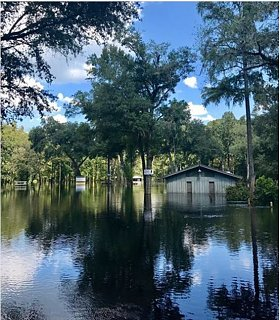 ginnie springs flooded.JPG