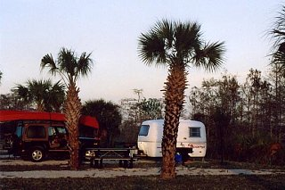 Click image for larger version  Name:01Everglades_Scamp.jpg Views:123 Size:62.3 KB ID:1203