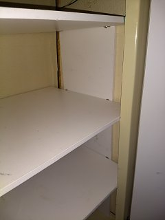 trillium shelf2.jpg