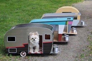 dog house.jpg