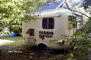 Burro81.1.jpg