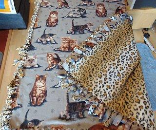 realistic kittens leopard print.jpg