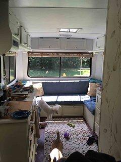 20190824-Gladys kitchen shot.jpg