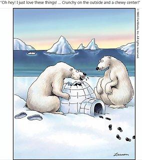 Farside Polar Bears.jpg