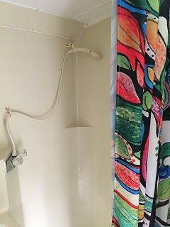 shower head n curtain.jpeg
