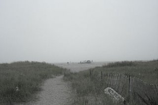 Click image for larger version  Name:grayland_fog_1.jpg Views:37 Size:21.8 KB ID:15236
