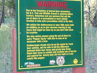 Click image for larger version  Name:bears.jpg Views:157 Size:88.3 KB ID:15558