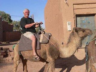 camel2_3.jpg
