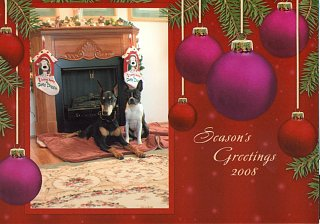 Click image for larger version  Name:xmascard2008.jpg Views:27 Size:290.2 KB ID:17307