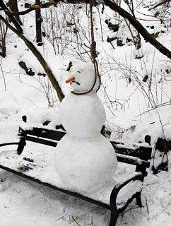 sick_of_winter.jpg