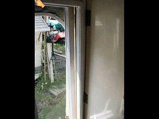 Screen_Door_02.jpg