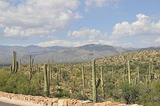 Saguaro_National_Park_r.jpg