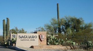 Saguaro_Nat__l_ParkXSM.jpg