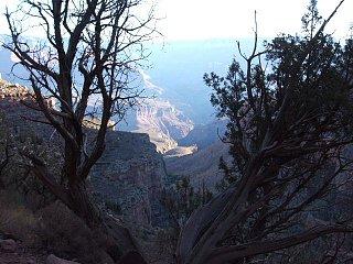 Grand_Canyon___09_015.JPG