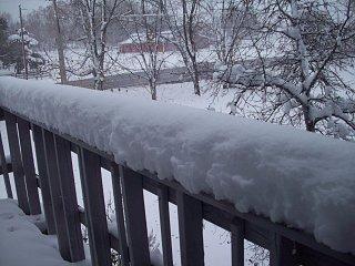 Fall_snow_storm_009.JPG