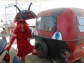 lady_bug.jpg