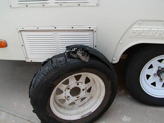Click image for larger version  Name:blown_tire.jpg Views:23 Size:44.5 KB ID:29729