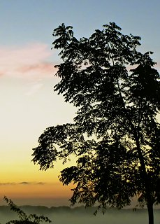 Niagara River sunrise  022.jpg