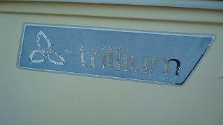 '78 Trillium 1300 Before 032.jpg