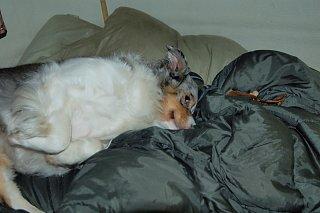 sleeping bag.jpg
