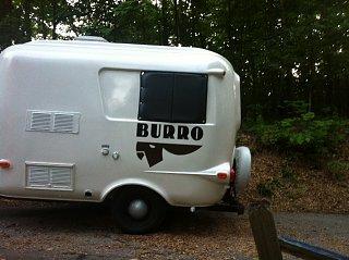 Burro Side View.JPG