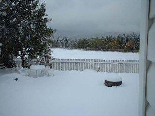 snow501.jpg