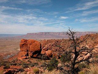 Page_Arizona.jpg