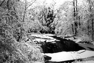snow creek - western maryland b&w.jpg