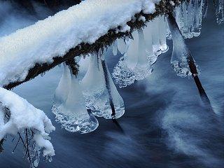 Winter Wonder.jpg