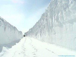 Click image for larger version  Name:snow.jpg Views:64 Size:26.8 KB ID:5599