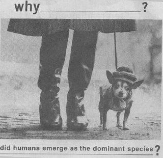 Click image for larger version  Name:dominantspecies.jpg Views:59 Size:23.4 KB ID:6293