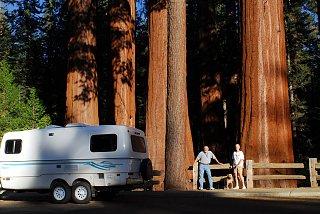 SequoiaNF2.jpg