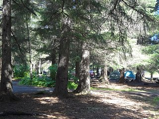 SewardForestCG Tents small.jpg