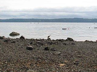 Beach1658.jpg