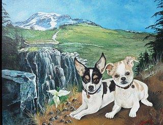 Two cute dogs.jpg