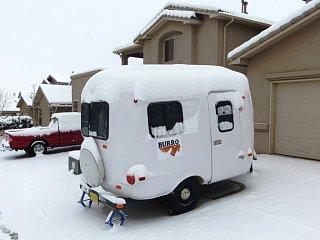 Burro in Winter 2015 Albuquerque New Mexico.jpg