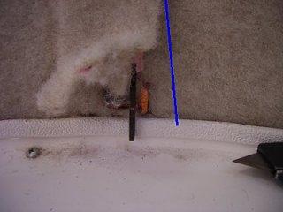 07Jul06_Solar_Running_Wire_Under_Rat_Fur_03b.jpg