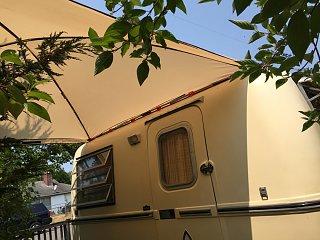 trilly canopy.jpg