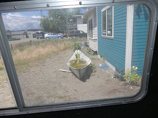 Window screen campster - 1.jpg