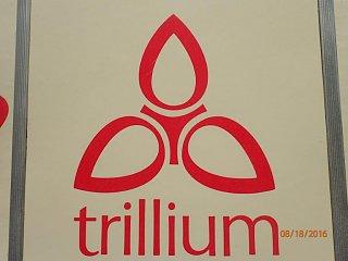 trillium 5 029.jpg