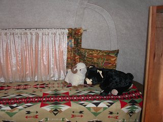 SCAMP Southwest Decor 2013 006.jpg