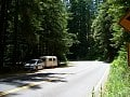 In the Redwoods  Highway 199, Somewhere between  Crescent City, California and  Cave Junction, Oregon