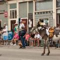Boom Days Burro Race, Leadville, CO