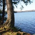 THe View while boondocking at horseshoe lake