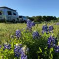 Texas Legato Winery, Lampasas TX (Harvest Hosts)